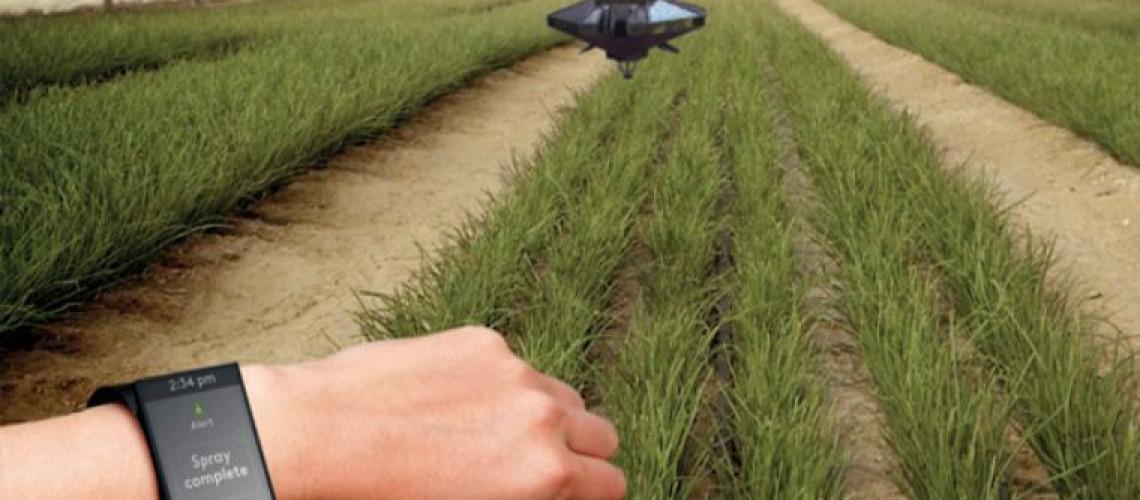 Evolución de la agricultura en el mundo a lo largo de la historia