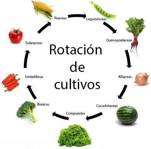 Asegura la rotación de cultivos
