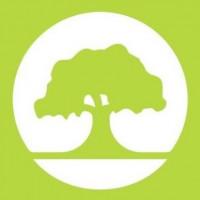 07. La Besana en Verde