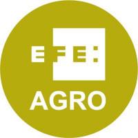 08. Efeagro - PODCAST