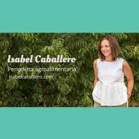 09. El Blog de Isabel Caballero