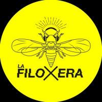 11. La Filoxera - PODCAST