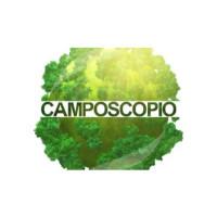 12. Camposcopio