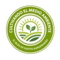 13. Cultivando el Medio Ambiente