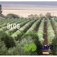15. El blog de SUEZ
