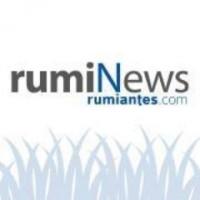 15. RumiNews