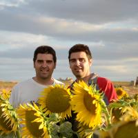 15. Twins-farms
