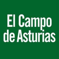 26. El Campo de Asturias